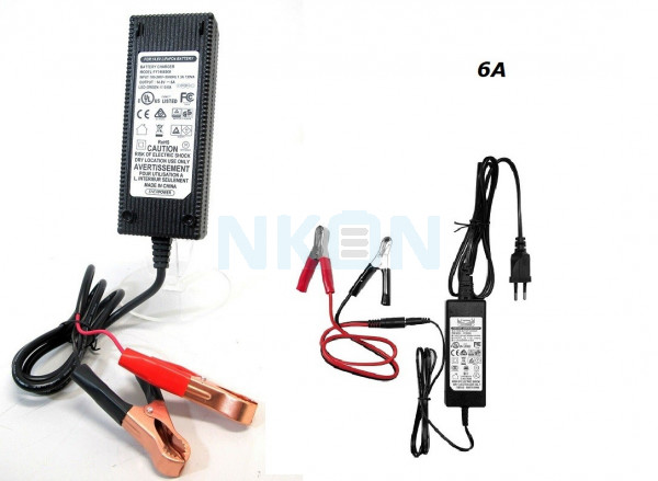 Enerpower / Fuyuang 14.6V LiFePo4 battery charger - 6A