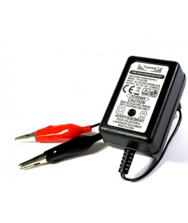 Enerpower / Fuyuang 14.6V LiFePo4 battery charger - 1.5A